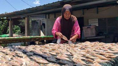 Photo of PKP: Ikan masin, ikan kering kurang dapat sambutan Ramadan ini
